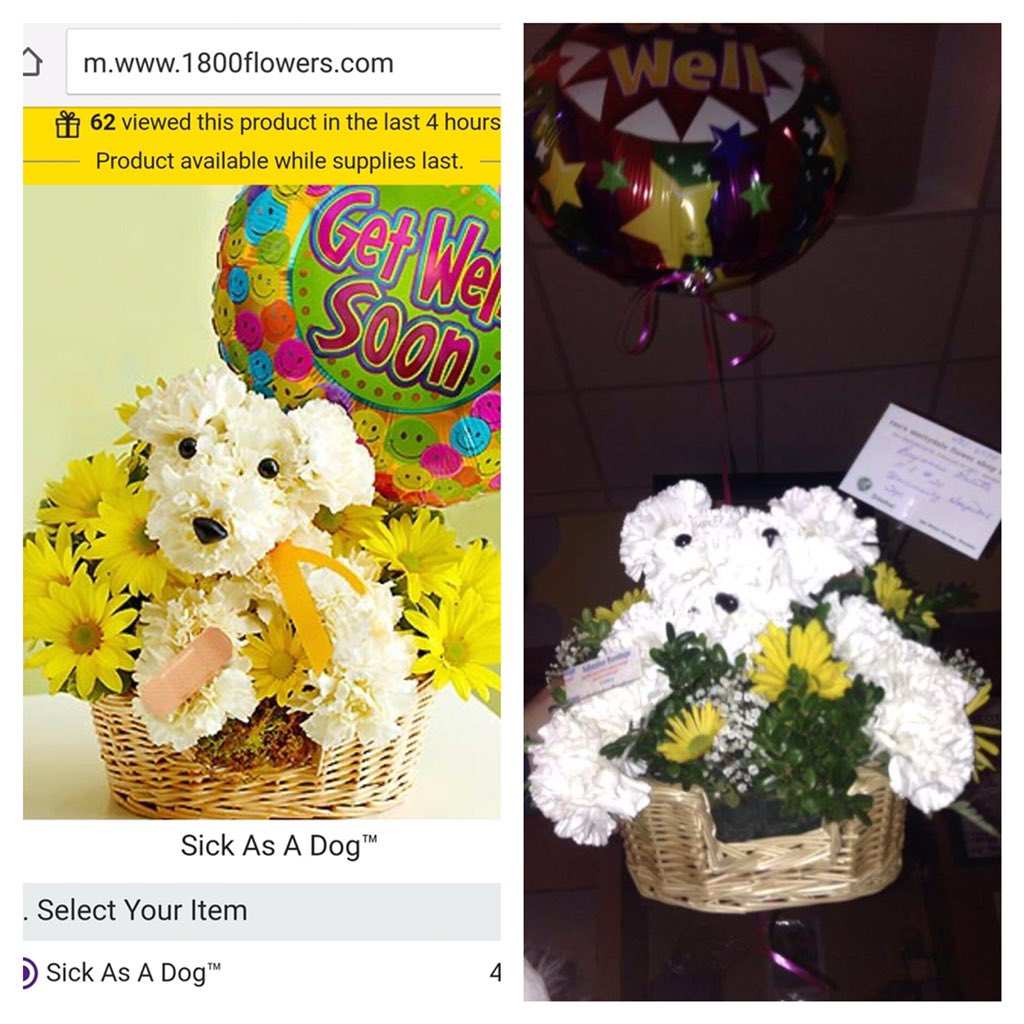 Sheena lane moberg on twitter flowers were delivered and look like 714 pm 25 dec 2015 izmirmasajfo