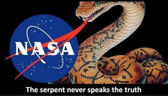 Image result for snake over NASA insignia