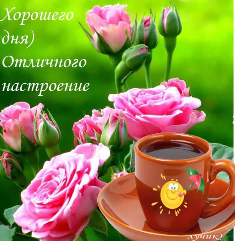 Картинки для, открытка замечательного дня и хорошего настроения