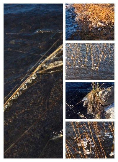 Pakkanen tekee taidetta rantavedessä. #luonto #kännykkäkamera #Saimaan #Haukivesi