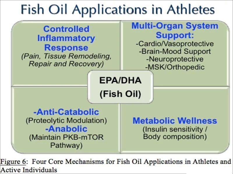 rhonda patrick fish oil
