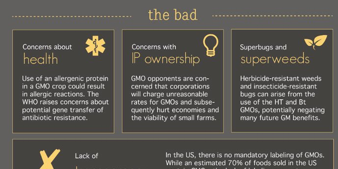 What Do You Know About GMOs Infographic ➡ https://t.co/Nv7b1iVcUt https://t.co/ALujkLmjLK