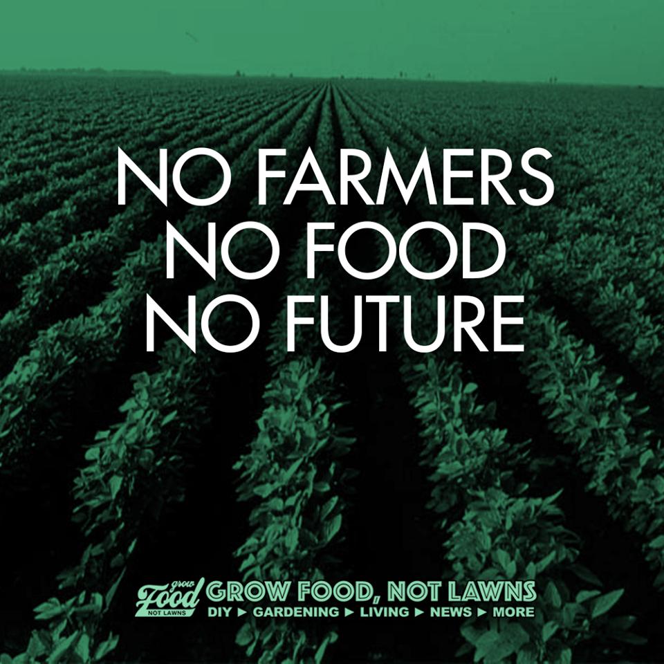 Del Sisga Organic Farm On Twitter No Farmers No Food No Future Simpleliving Organicfarming Organic Organicfood Organicliving Https T Co Oyts69dzru