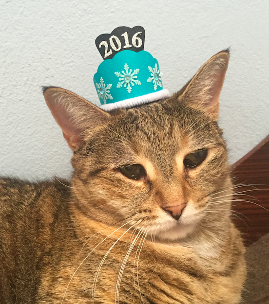 Win a Tiny Hat + a Year's worth of cat litter! https://t.co/WDep65ZpBP @TidyCats #NYETidyCatsHats #sponsored https://t.co/VfZZROCkdo