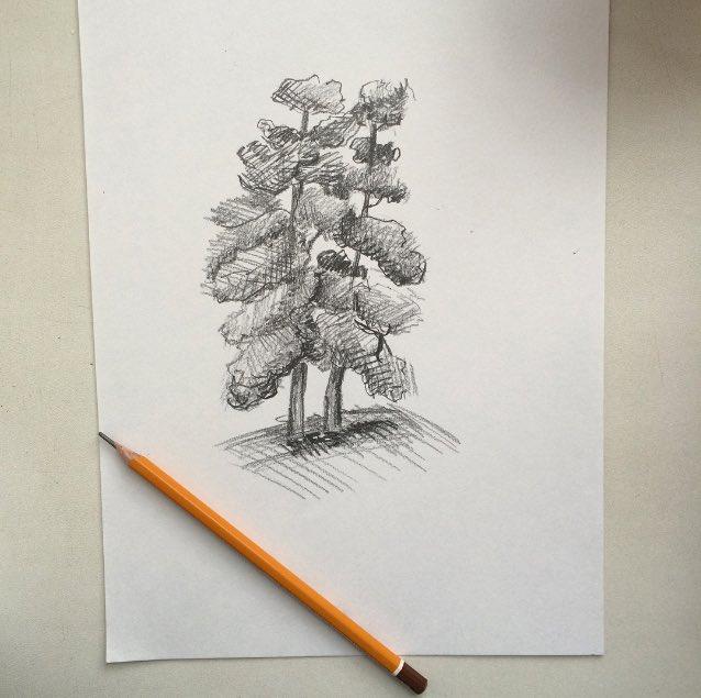 Картинки карандашом спаси природу