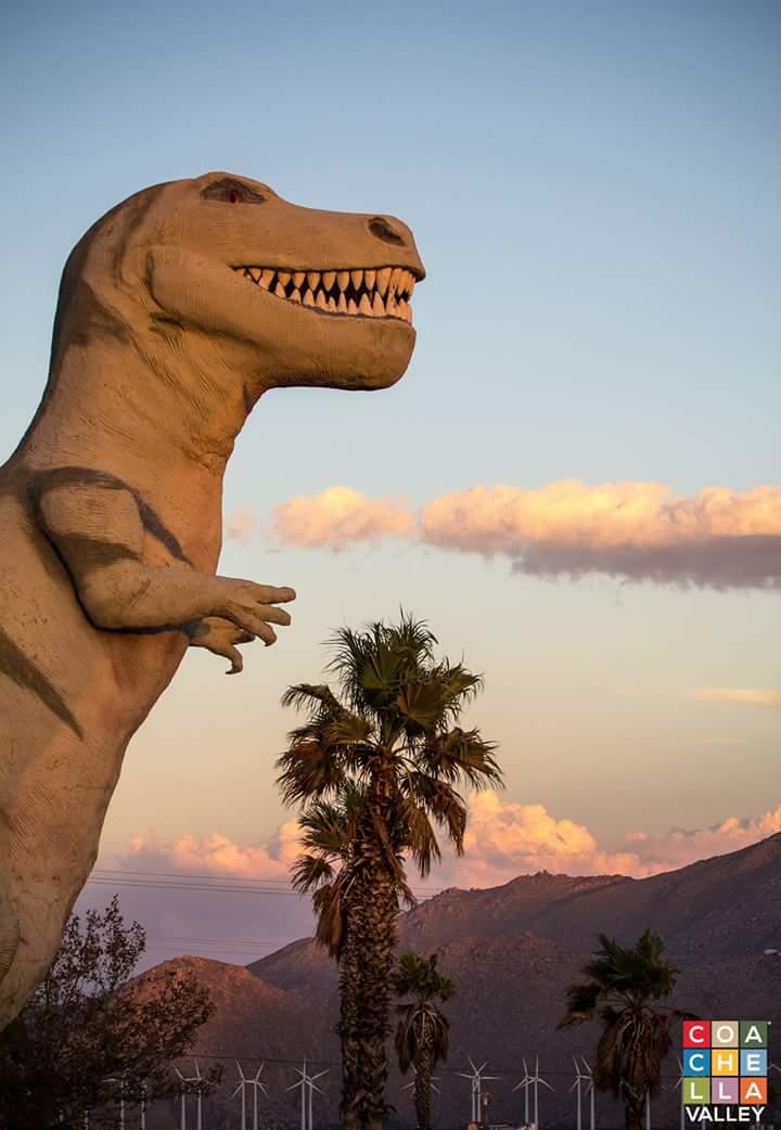 Ren Palm Springs social image