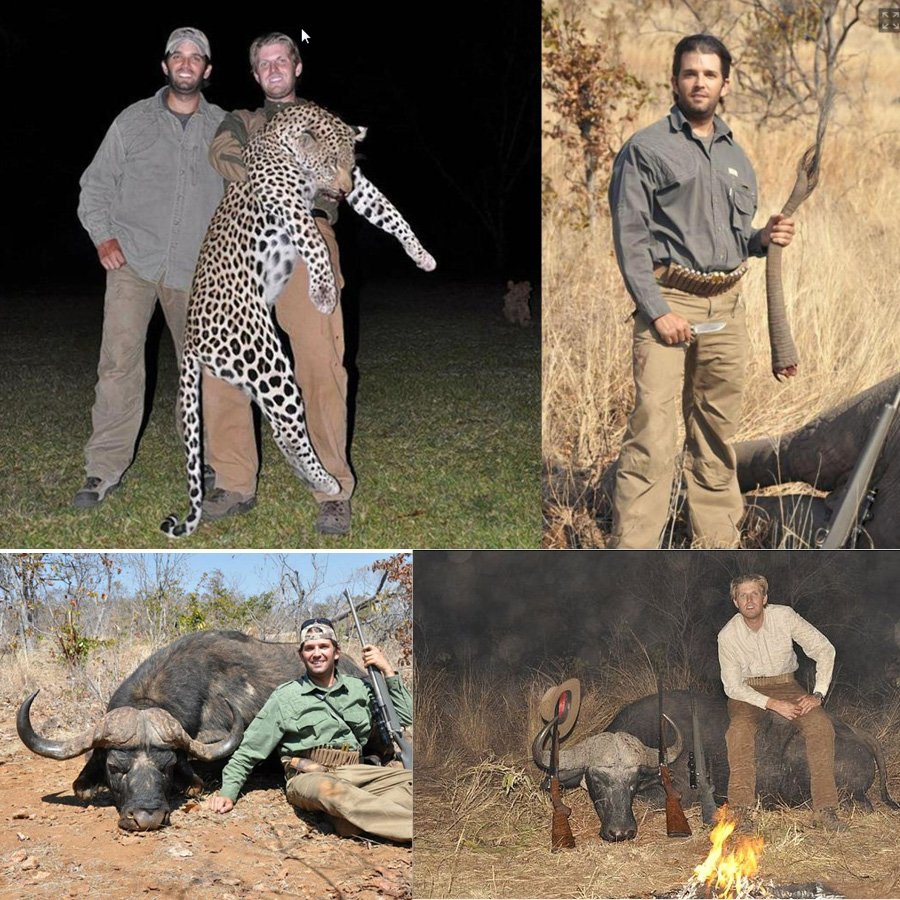 Image result for Donald and eric Trump hunting
