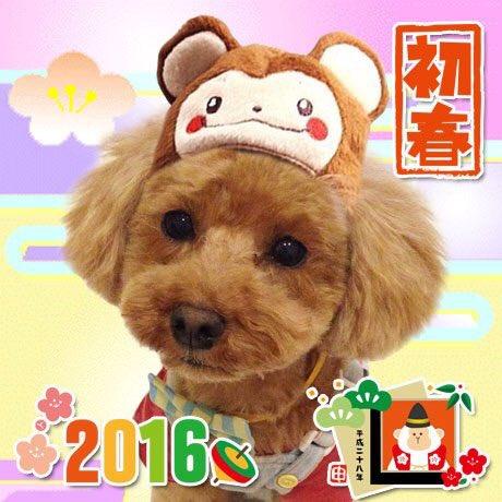 あけましておめでとう。(^o^)/ 今年もよろしくお願いします。 https://t.co/dJIXIKn6bn
