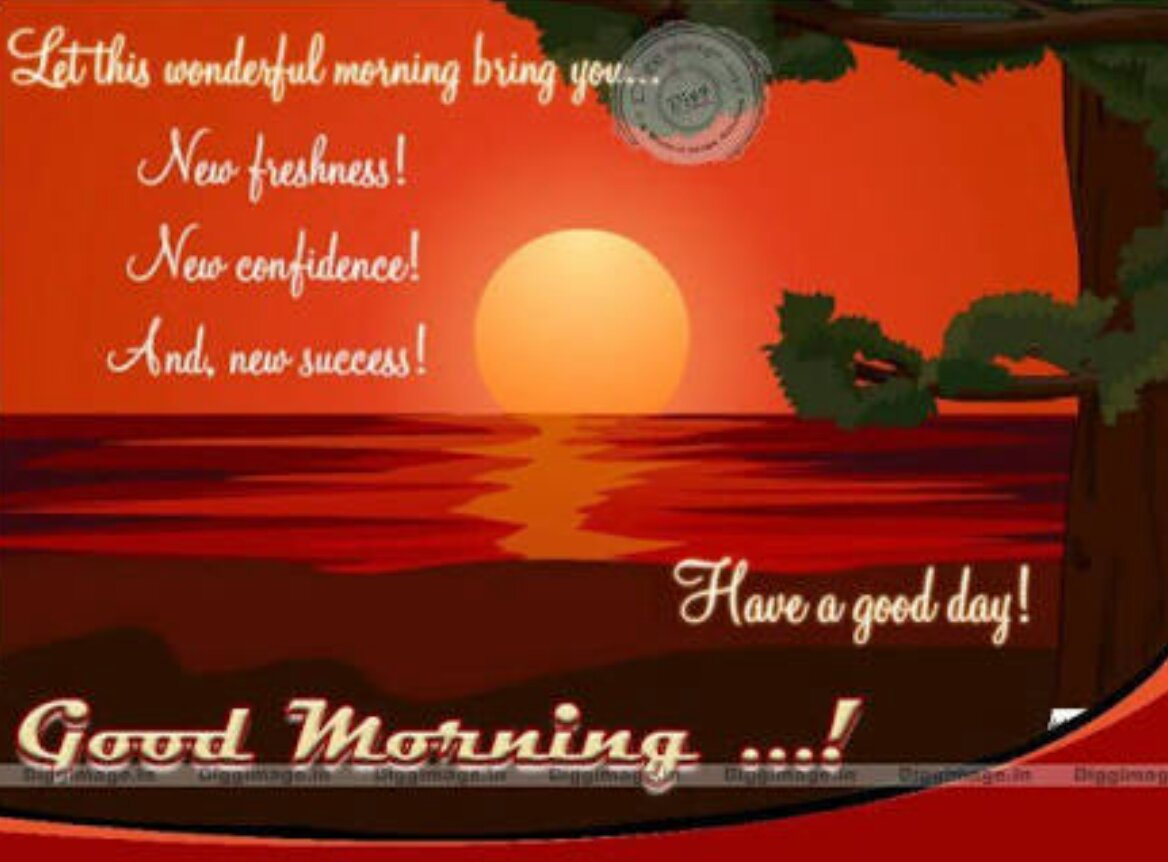Rubi Gupta On Twitter At Mirzasophia2 Good Morning Happy New Year