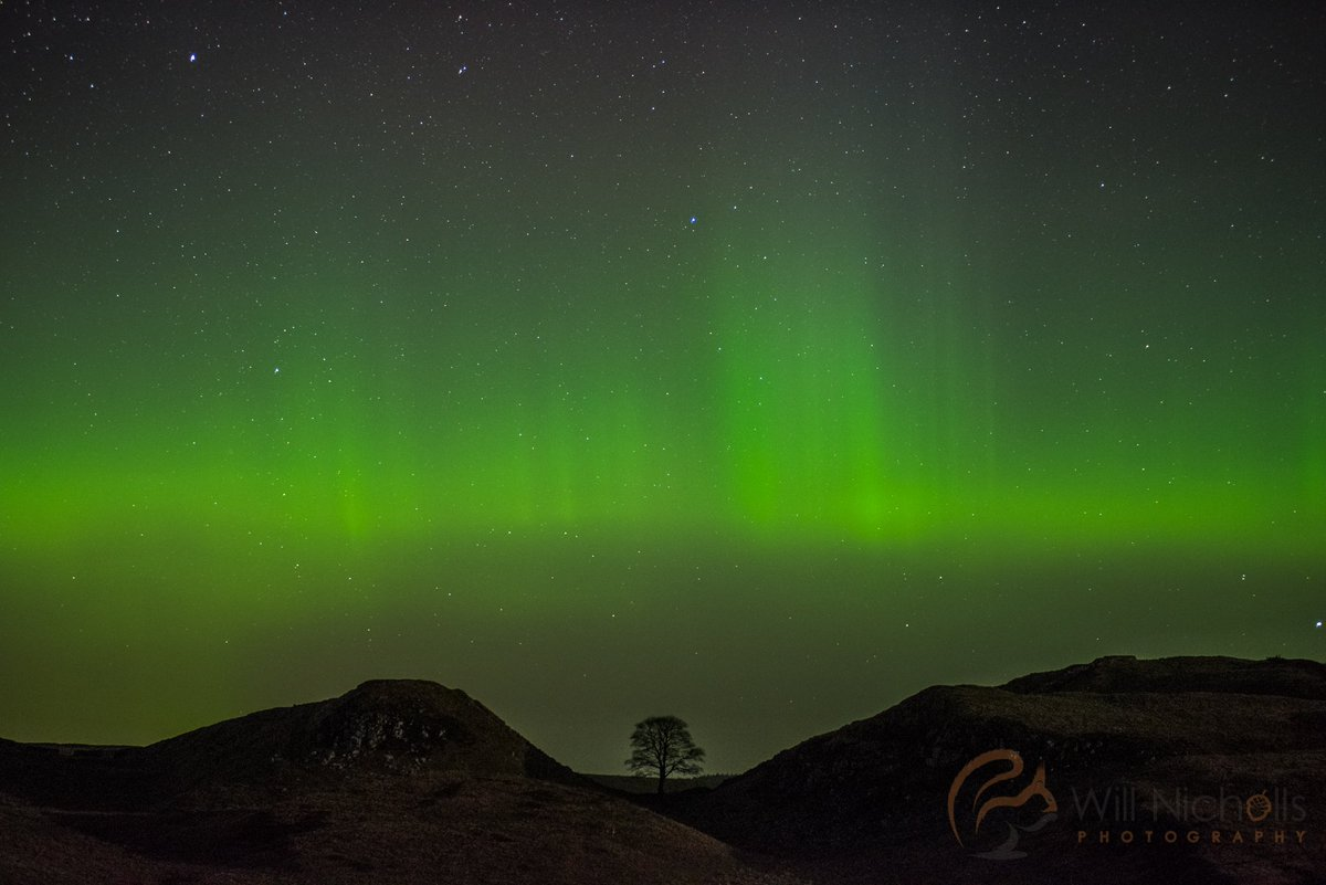 Happy New Year everyone. Here are the Northern Lights at MIDNIGHT at Sycamore Gap, Hadrian's Wall. @VirtualAstro https://t.co/TaWHuO7lrL