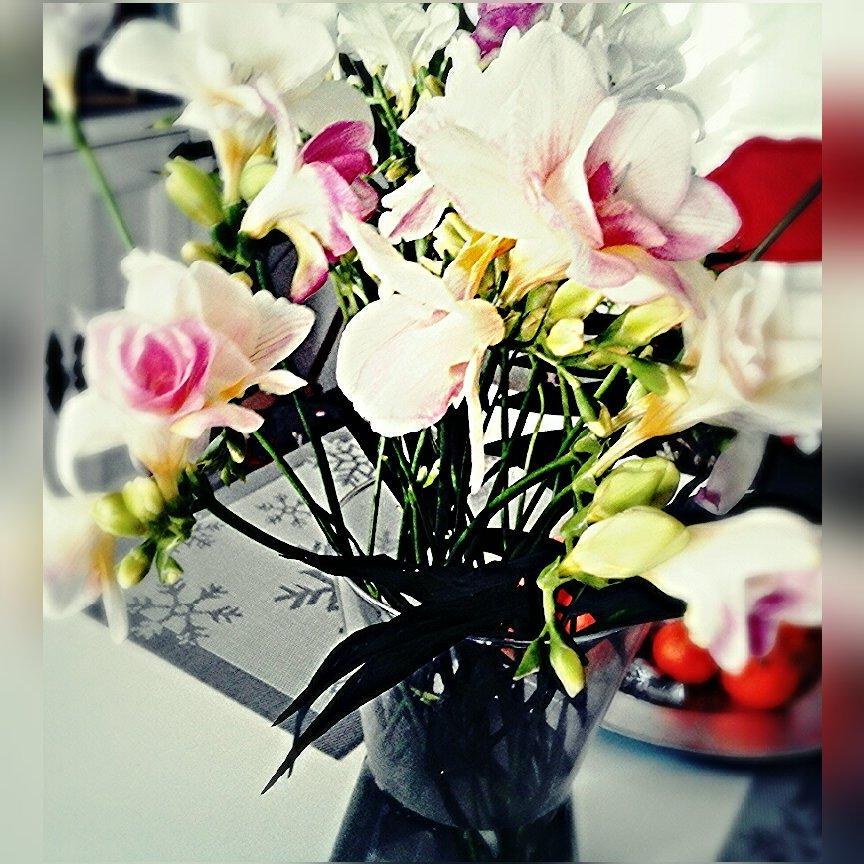 Hashtag Flowerspic Auf Twitter
