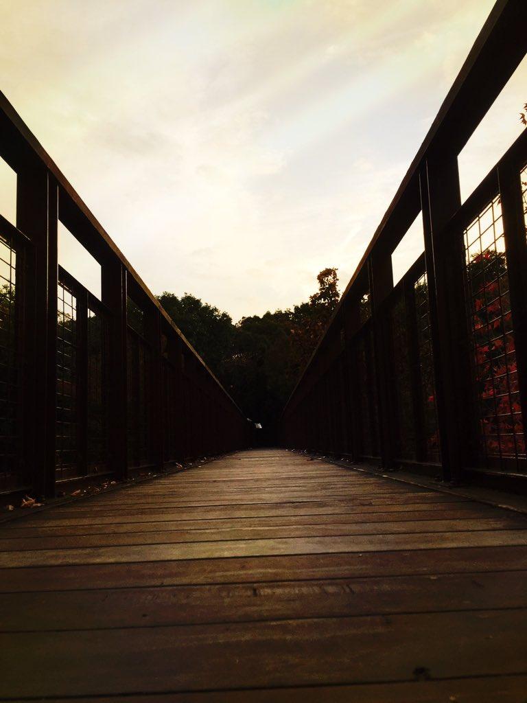 2015年の秋です。 今年もたくさん写真撮ろう。  #ファインダー越しの私の世界 https://t.co/wQSXZXUlBX