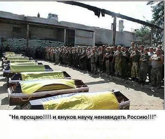 У торговца наркотиками в Киеве изъято каннабиса на 400 тысяч, - Нацполиция - Цензор.НЕТ 3607
