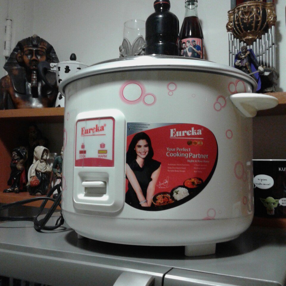 Had Oster 10 Cup Rice Cooker Instructions
