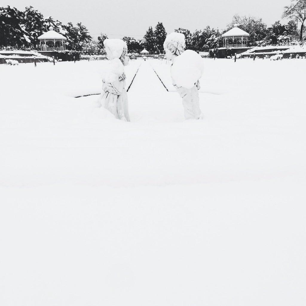 敷島公園ばら園 https://t.co/pensdlsVb1