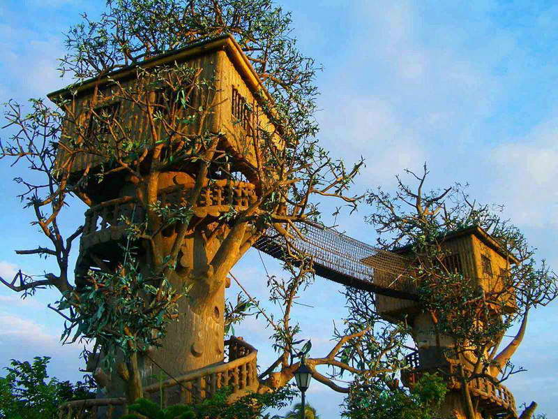 Cool tree houses...  https://t.co/X9pNhnqp0k