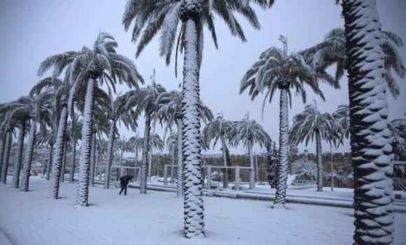 Arabia Saudí registra su primera nevada en 85 años https://t.co/3WRBdmGhIT https://t.co/H3XGdborPO