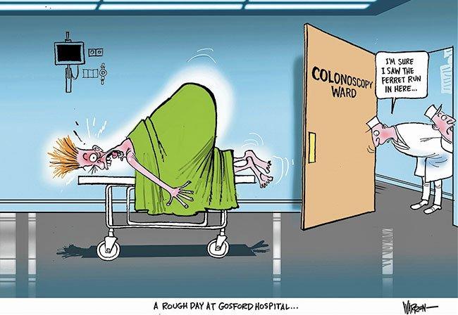 Merveilleux Feral Ferret Bites Patient In NSW Hospital Bed. Cartoon By Warren Brown.  Https: