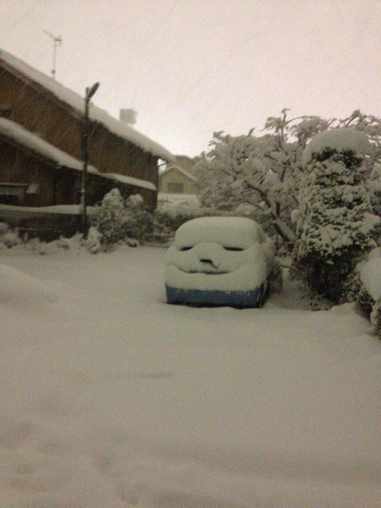 明日東京でも10センチ以上積もるということなので、一昨年の冬のを。何笑ってんだよ!! pic.twitter.com/i0cxGK0th5