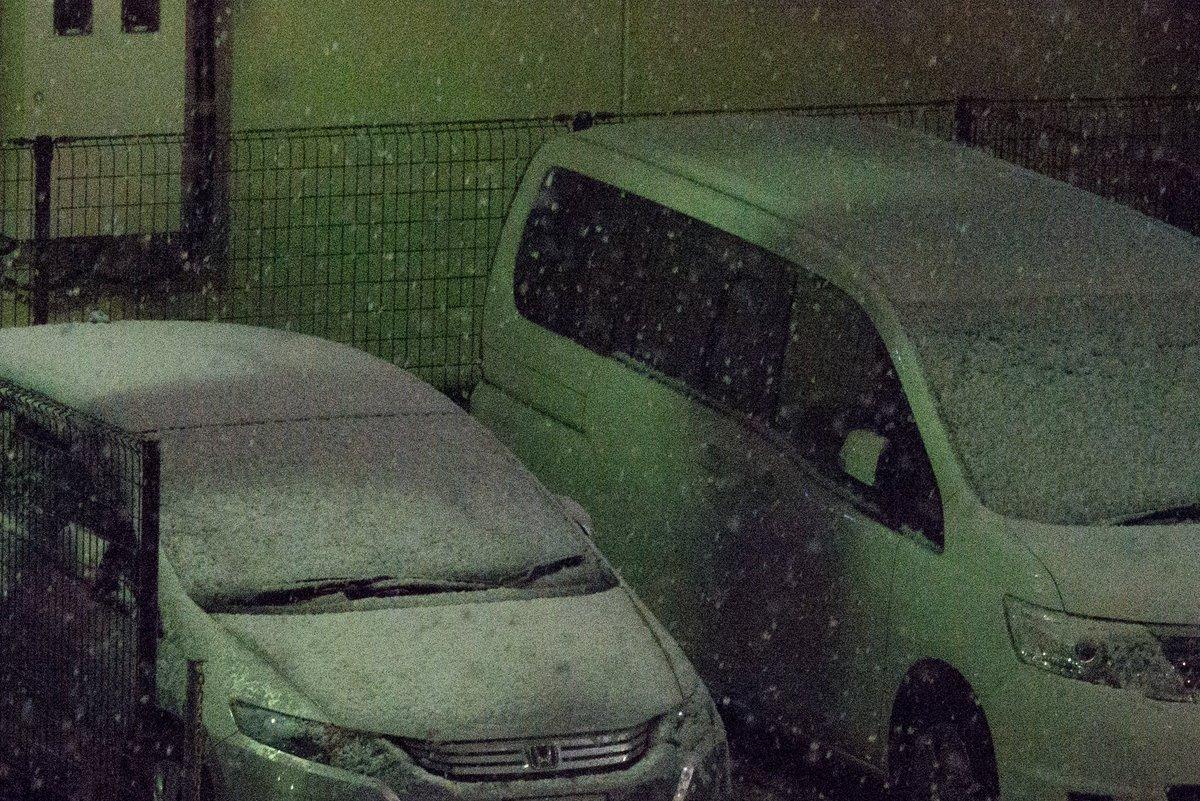 今現在の八王子の様子です、もう車は白い。 明日は「八王子は雪です!」ってTV局が定番ネタを撮りに来そう、もし来たら「初雪は都心の方が早かっただろ!」ってキレたい。 https://t.co/3nZAdqYNrG