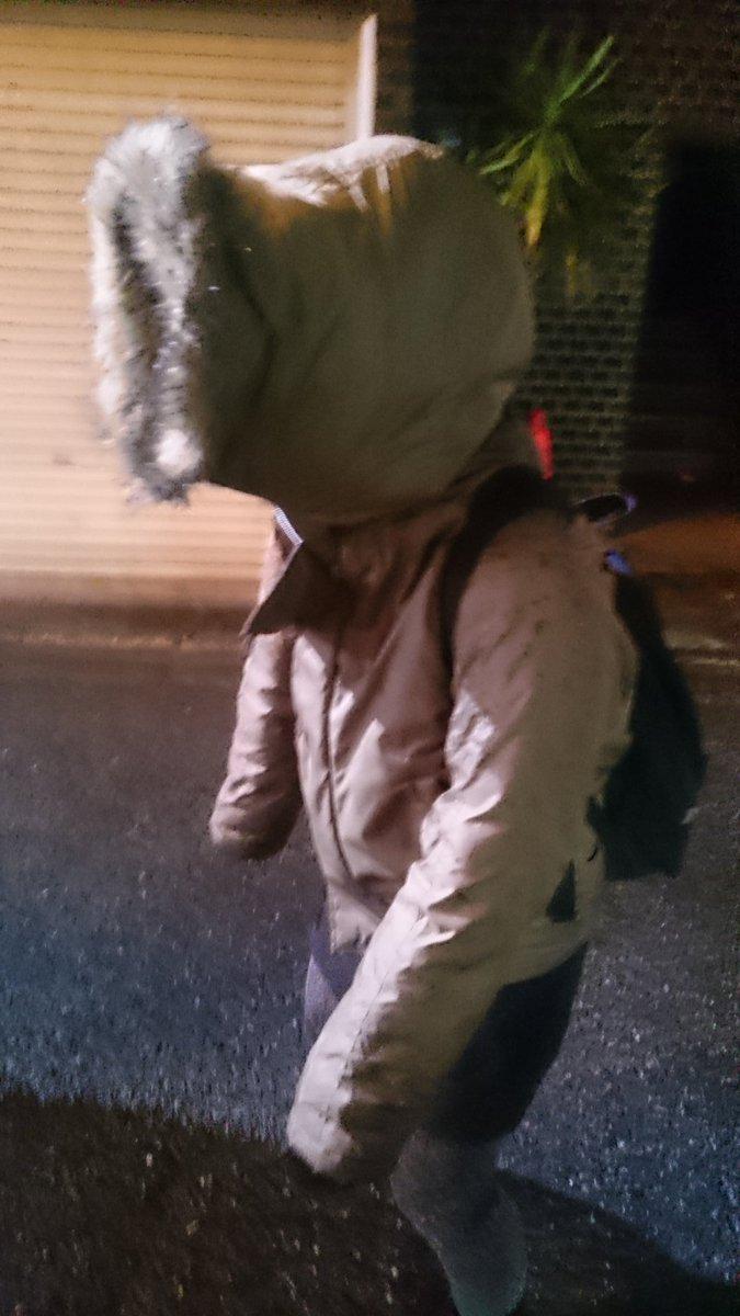 これ今日友達が着てたコートのフードかぶったらこんなフォルムになってたんだけどこんな衣類ある!?私が無知なだけで寒い国とかでは常識なの!?構造上欠陥としか思えないし食虫植物かよ…前見えてないって言ってたし混乱極まる pic.twitter.com/ht8FUmLmz6