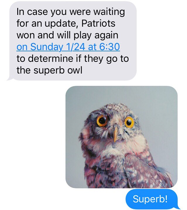 My brother, keeping me abreast of all things football and ornithology related https://t.co/FijRMvZ8l8
