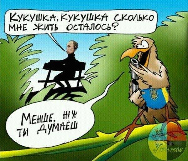 До мая 2016 года в штате патрульной полиции будут работать 16 тыс. человек, - Аваков - Цензор.НЕТ 8975