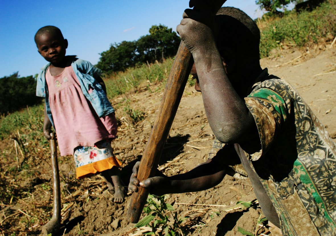 Severe & erratic weather in #Malawi brought on massive food crisis. Read more: https://t.co/ZfqfD7p5Lc https://t.co/NNwbjBQ3H0