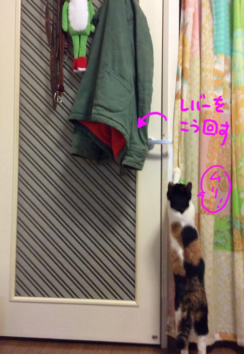 うちのドア、猫が開けられないようにレバーの位置を図のように変更しているのですが pic.twitter.com/Ky4E38vOMU