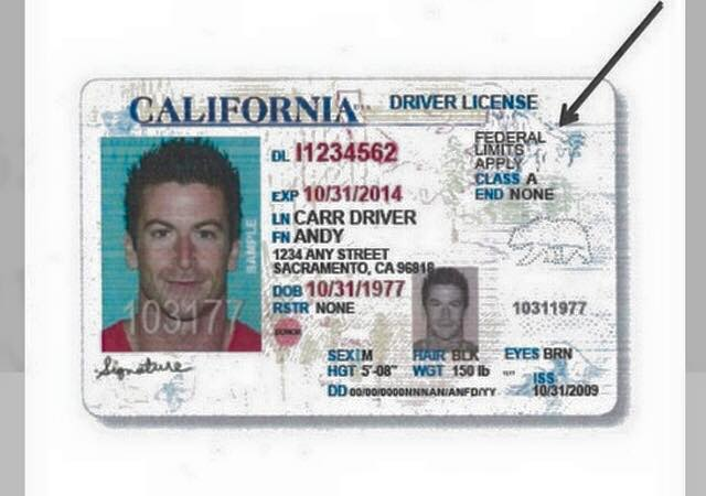can undocumented immigrants get a california drivers license