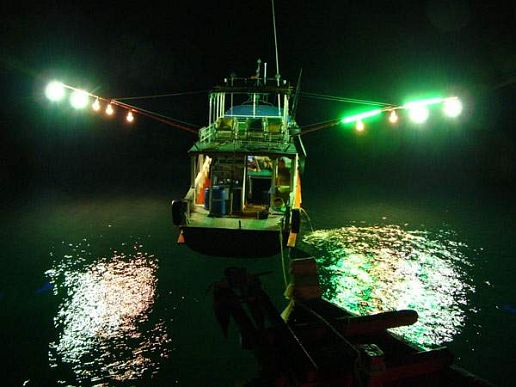 Tim peake on twitter a sea of green fishing boats lights for Boat lights for night fishing