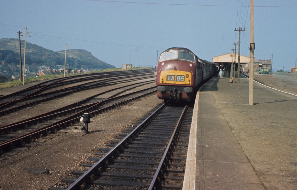 CYMi5 3WwAAgR1q?format=jpg&name=medium - Trains no more across the River Taw #5