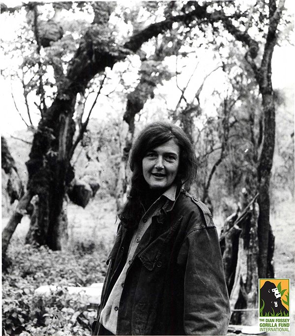 On this day in 1932, Dr. Dian Fossey was born. We are honored to continue our founder's work. https://t.co/HLoKFcW5Q3