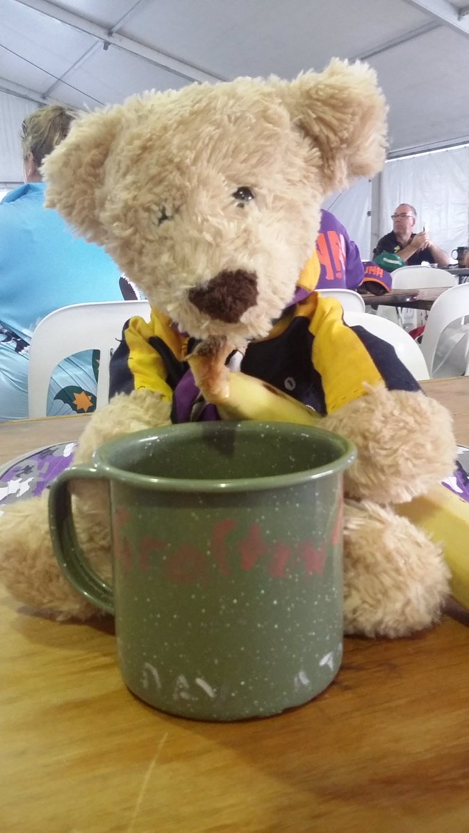 #AJ2016 #supersaturday  Breakfast Cub-Be Bear waiting to see his cubs and big brother scout bear Baloo https://t.co/H590oQw1bK