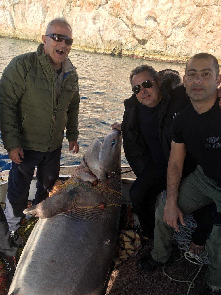 Σχετικά με τον «μεγαλοκαρχαρία» του Υπουργού Εθνικής Άμυνας Πάνου Καμμένου