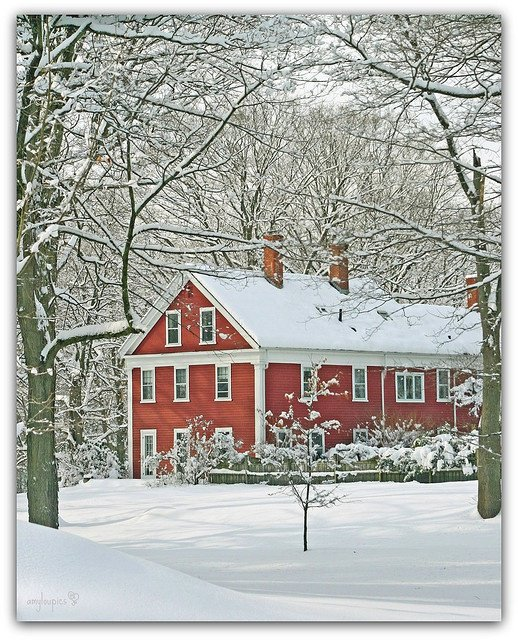 .#Winter in New England; Such are the times for #reading great books. https://t.co/AoCWPPsDaY #ENJOY https://t.co/wcyq3kTtJZ
