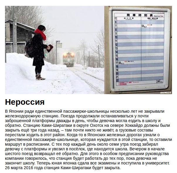 россия - страна-подонок, страна-выродок, страна-мразь - Страница 5 CYTjRkRWwAEKwW8