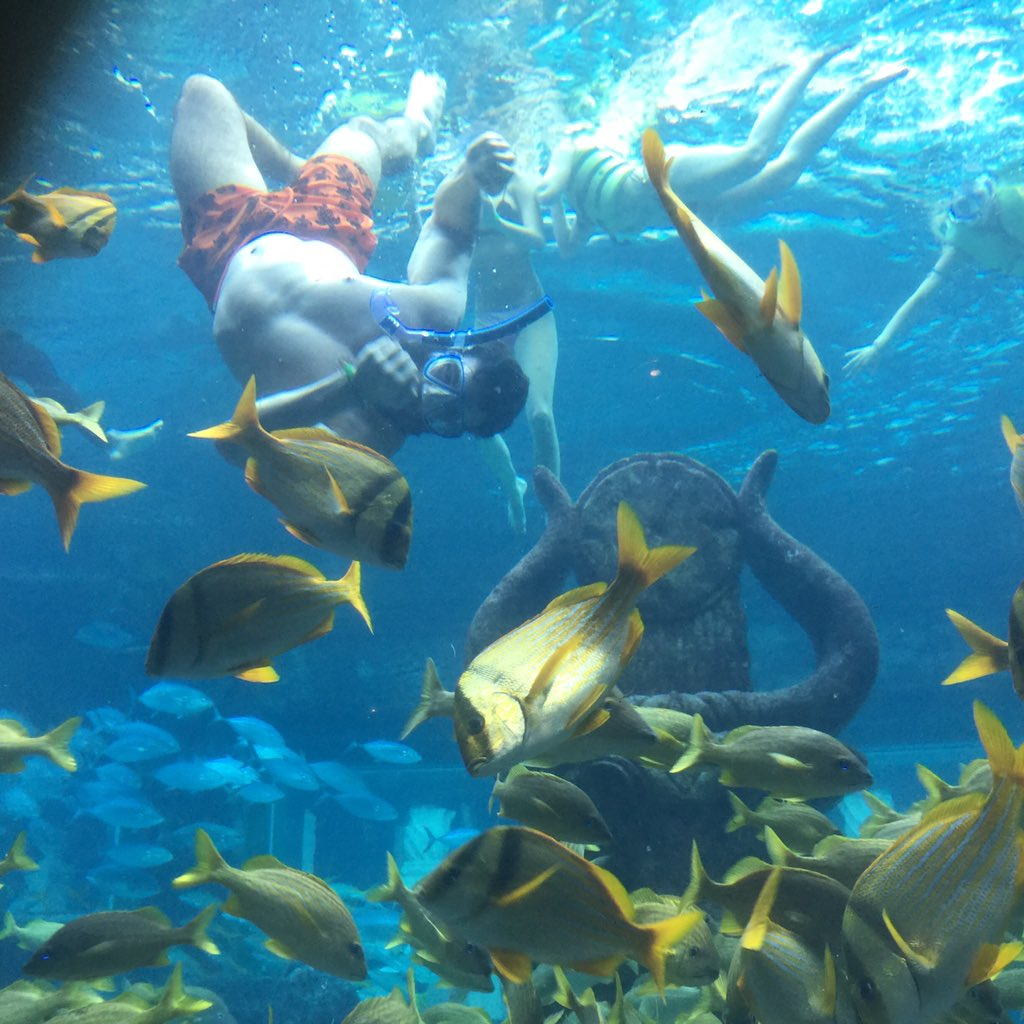 Dan bilzerian on twitter plenty of fish in the sea https for Plenti of fish