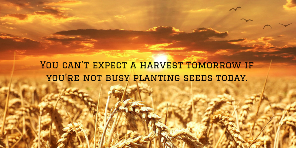 You can't expect a harvest tomorrow if you're not busy planting seeds today. #quote https://t.co/hXx65j1b0Y