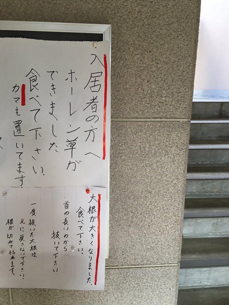 入居したい pic.twitter.com/sIk1RwFHsQ