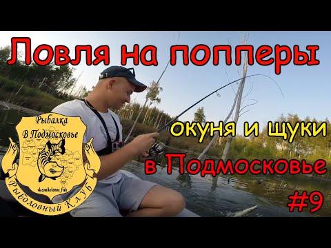 Отчеты о рыбалке на оке в районе серпухова