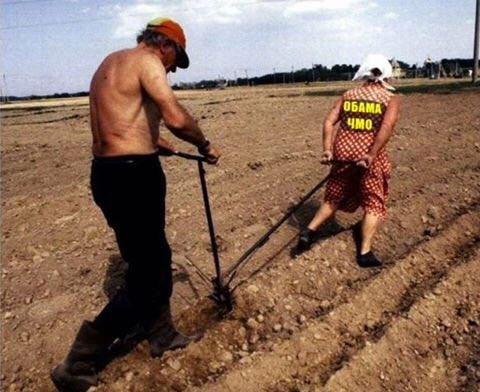 Жители Севастополя скупают хлеб и томатную пасту - Цензор.НЕТ 3326