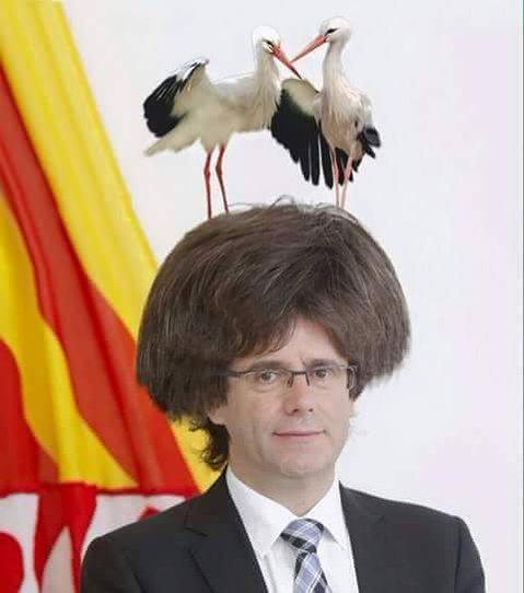 La cuestión catalana, España y sus regiones. - Página 3 CYsCcmSW8AEfBjf