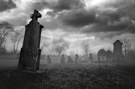 Conosciuta come la bevanda che toglie il sonno, diventa il pretesto per parlare della morte