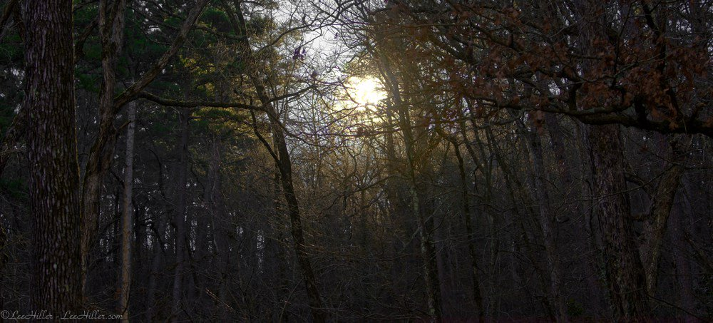 A Golden #Sunrise on the #Trail #Hiking #NationalPark #HotSprings #2016 http://hikeourplanet.com/2016/01/14/a-golden-sunrise-on-the-trail… pic.twitter.com/6SQUc9GAdQ #optoutside