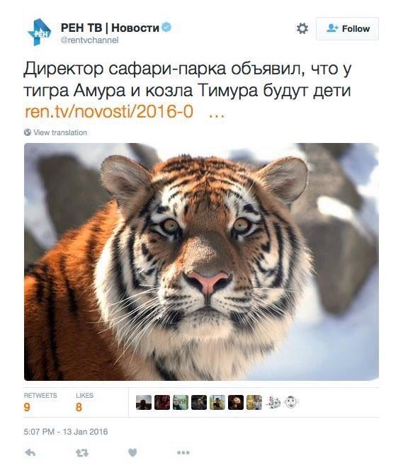 Россия в 2016 году не планирует снижение экспорта нефти, - Новак - Цензор.НЕТ 4482