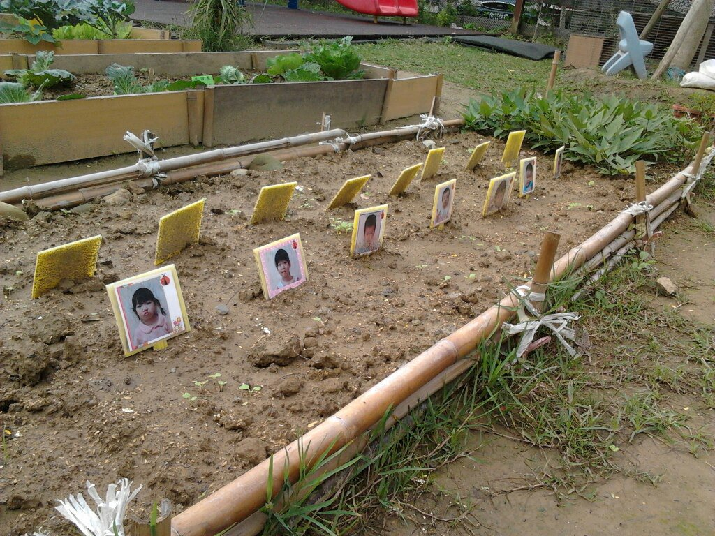 This kindergarten in Taiwan probably shouldn't have used photos to mark each student's plant. #choychoychoy https://t.co/0zO1kRo00N