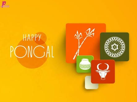 Happy Pongal : Greeting Cards  IMAGES, GIF, ANIMATED GIF, WALLPAPER, STICKER FOR WHATSAPP & FACEBOOK