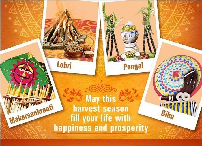 Happy Lohri, Sankranti, Pongal, Bihu  IMAGES, GIF, ANIMATED GIF, WALLPAPER, STICKER FOR WHATSAPP & FACEBOOK