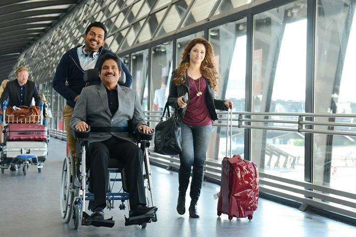 Oopiri Thozha, Nagarjuna, Karthi, Vamshi Paidipally Movie. Tamannaah plays the heroine with a host of other actresses playing guest roles. Oopiri-Thozha is set for a march 2016 release. nagarjuna in Oopiri, Nagarjuna in Thozha, Hot Tamanna in Oopiri, Hot Tamannna in Thozha, Karthi in Oopiri, Karthi in Thozha, Hot Gabriella Demetriades in Oopiri, Thozha